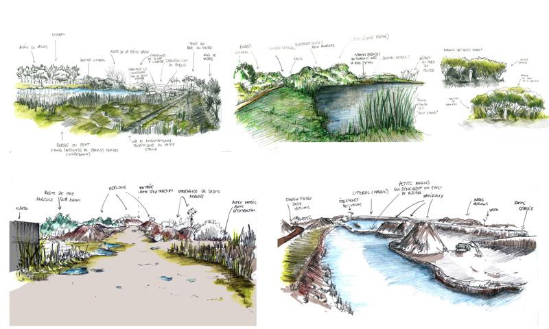 Projet carri re du colosse projet paysage zone up for Architecture des jardins et du paysage